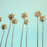 Besomage feat. Lunis & BRAN - California Dreaming