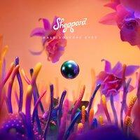 Sheppard - Animals