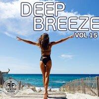 deadmau5 feat. The Neptunes - Pomegranate (French Original Remix)