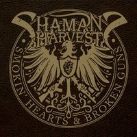Shaman's Harvest - Dragonfly (Extended Unplugged Version)