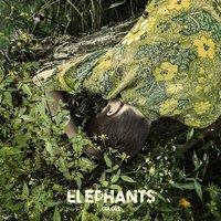 The Elephants - Friend