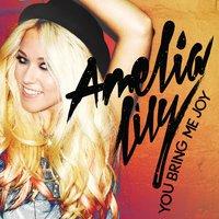 Amelia Lilly Vs Dj James Munich - - You Bring Me Joy (Dj Kapuzen Vs Dj Micky Rossa Mashup)