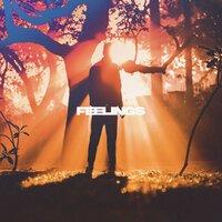 Nettson feat. Covira - Feelings