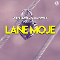 Pulsedriver & Tim Savey feat. Polina Vita - Lane Moje