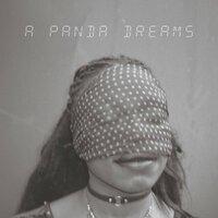 Sei feat. UOKAYE - Panda Dreams (OK OK)