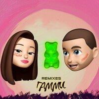 Strelnikov feat. Wadim Schaforost & Dusha - Гамми (Frost Remix)