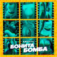 Амурус - Бонита Бомба